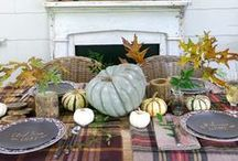 Fall Decorating Ideas / by Megan Miller { Nestled }