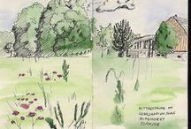 journal . sketchbook