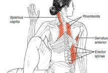 Body | Yoga