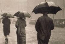 Rainy day / by usagi nomedama