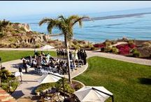 Beach Weddings / by Pismo Beach