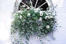 Garden / by Julie Barr