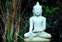 Meditation / Passages Addiction Treatment Center (855) 861-6181