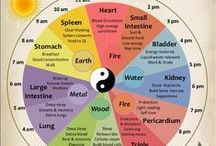 Yin and yin/Chinese medicine / Patient & soft