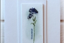 card ideas / by Beth Stuefen-Wagner