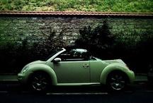 verd*