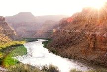 Desolation Canyon- Green River Rafting / by Western River Expeditions - Rafting