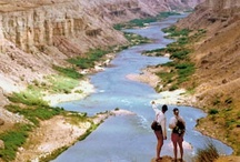 Favorite Hikes / by Western River Expeditions - Rafting