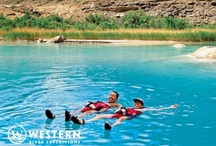 Relaxation! / by Western River Expeditions - Rafting