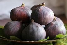All Things Fig