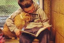 Cats & People / Cats, as well as dogs, can provide therapy or just companionship for people in need of it.