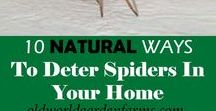 Insect and Pest Control