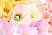 DIY | paper flowers / by Miss Sabine