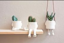 DIY | plants / how to arrange plants in a room / by Miss Sabine
