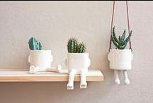 DIY | plants / how to arrange plants in a room