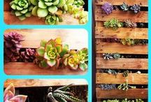 Deck design / by April Leigh Smeraldo
