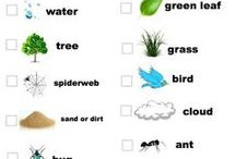 Nature Play / Ideas for Nature Club