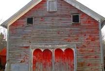 Barns / by Kim Thompson