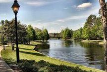 Disney Port Orleans - Riverside Resort