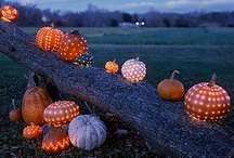 Festive Fall / Fall is one of my favorite times of year.  I love everything that comes with this wonderful season.