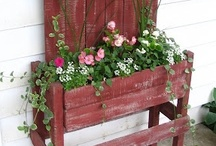 Yards/Porches/Gardens/Plants / by Shannon Dickerson