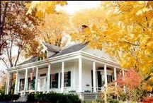 Fall Foliage / The vibrant colors of the changing leaves never get old. / by BedandBreakfast.com