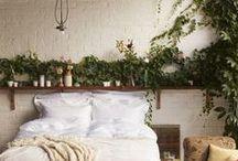 Bedroom / by Elaina Turpin