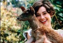 Audrey Hepburn / by Cecsi Haze