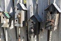 Bird Houses / by Craftori - arts . crafts . vintage