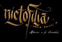 Nyctophilia / by Fernando Arizpe