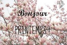 French-Printemps / la fete du printemps, transformative, creative, fresh, new, innovative, a slice of history, open, expressive,  / by Carolyn