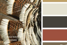 Web Design Colors / by What U Talking Bout Wills?