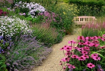 Garden Design & Flowers / from Cottage to Modern