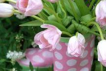 Ahhhhh Spring / by May Kriegel