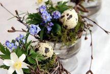 Créations de Pâques / Compositions florales originales pour les fêtes de Pâques
