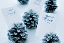 Winter Wonderland / Winter White ideas and Inspiration for Supper Club couples Holiday Dinner / by Bringing Up Burns