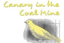 Canary / Canary in a coal mine / by Carolyn
