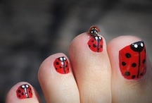 ladybugs / by Denise Donnelly