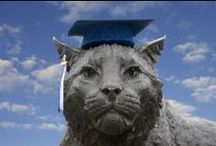 UNH Commencement / UNH Commencement  / by University of New Hampshire