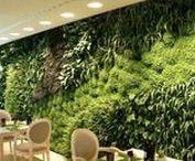 Jardim vertical Zest Restaurante / Pine Cliffs