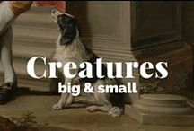Creatures Big and Small / by J. Paul Getty Museum