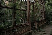 old green houses and potting sheds / by Pamela Waddell