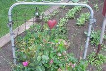 Garden / by Pamela Waddell