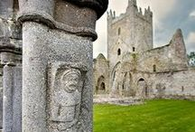 carvings from castles, cathedrals and buildings / by Pamela Waddell