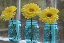 Spring / Our favorite recipes, decor and DIY projects to spring into the season.