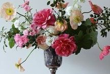 celebrate: flowers / by DeBoe Studio