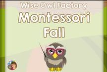 Montessori Fall / Montessori and Montessori inspired fall educational resources and learning activities / by Carolyn Wilhelm, NBCT, Wise Owl Factory