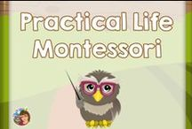 Practical Life Montessori / This board is for pins with links to blog posts demonstrating practical life activities for the Montessori classroom or home.  / by Carolyn Wilhelm, NBCT, Wise Owl Factory