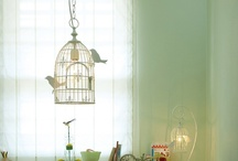Bird Cages / by Sunny Days and Starry Nights