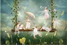 Fairy photographs